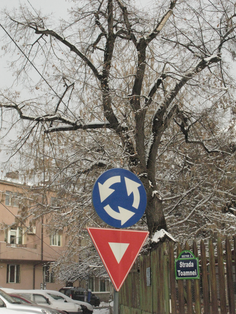 EXCLUSIV: Șoc, pe Strada Toamnei din București a venit iarna!
